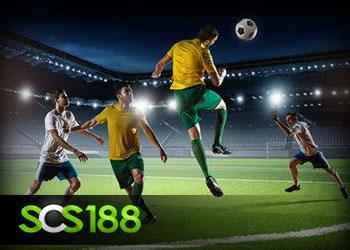 แทงบอล scs188